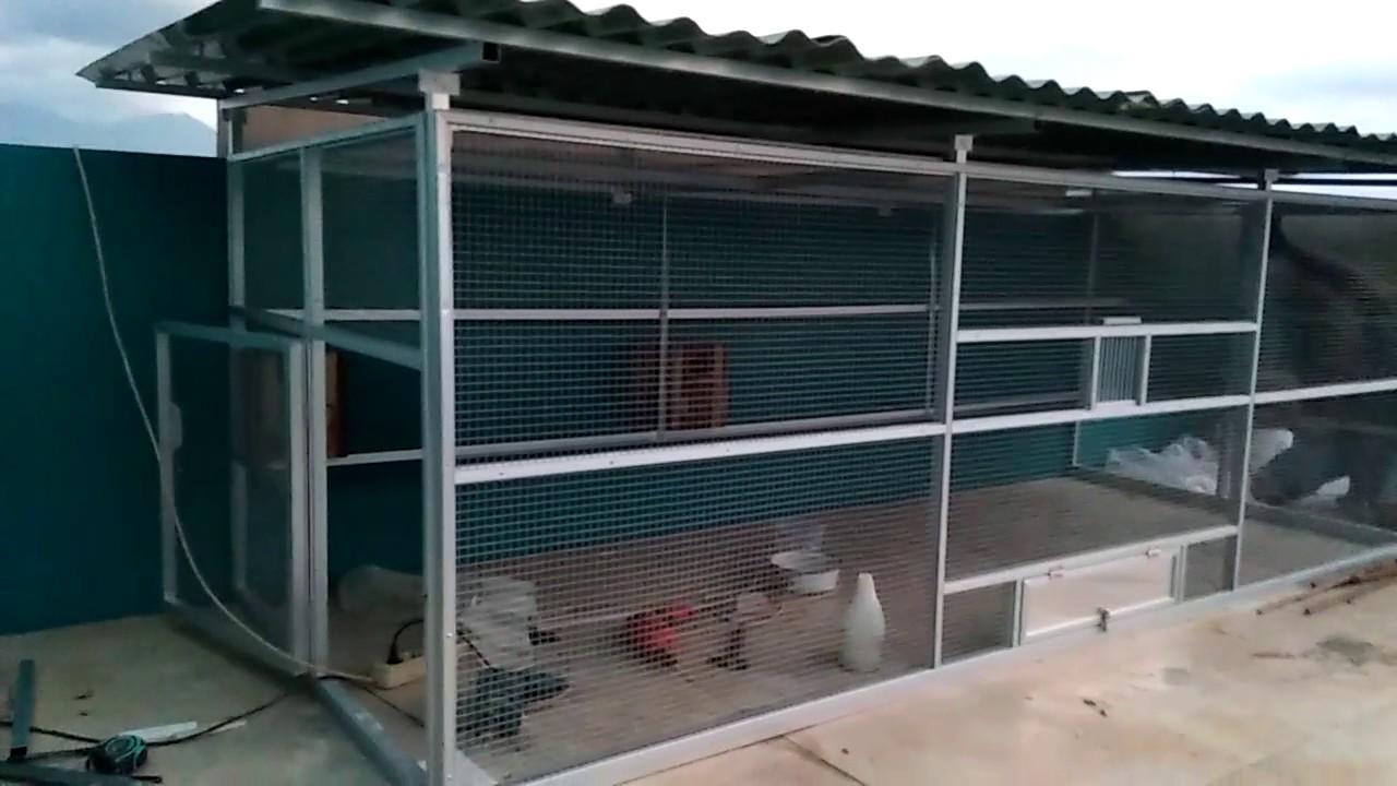 Gambar Cara membuat Kandang Koloni Ternak Lovebird sederhana